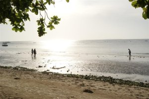 panglao sea shore
