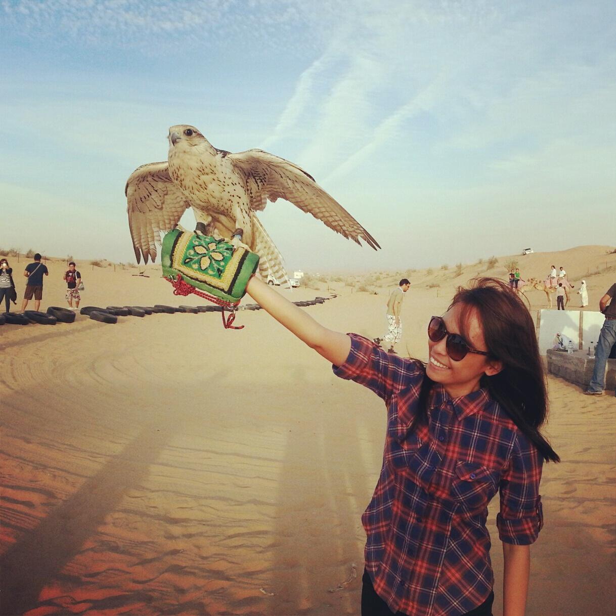 Week 2 falcon national bird of the uae find me a break desert safari dubai falcon biocorpaavc Images