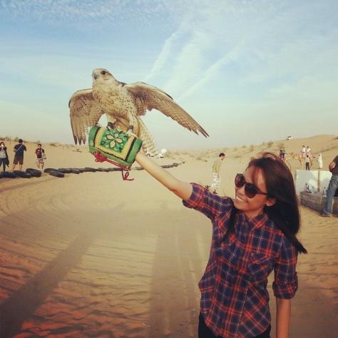 desert safari dubai falcon